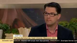 Partiledarintervju - Jimmie Åkesson (SD) - Nyhetsmorgon (TV4)