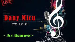 Dany Micu - Joc tiganesc