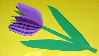 Аппликация Тюльпан Своими Руками(Аппликация Тюльпан Своими Руками В этом видео мы сделаем красивую аппликацию из бумаги своими руками «Цве..., 2015-07-28T06:21:59.000Z)