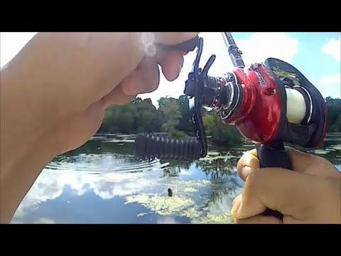Bass Fishing At Maltby Lakes In West Haven, CT