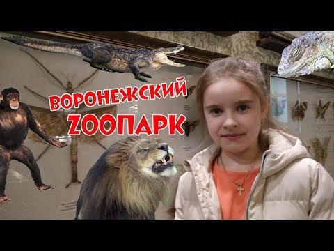 🐾Иду в «Воронежский зоопарк имени Александра Серафимовича Попова»