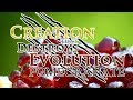 12/9/18 - Dr. Kent Hovind: Pomegranate - Creation that Destroys Evolution!