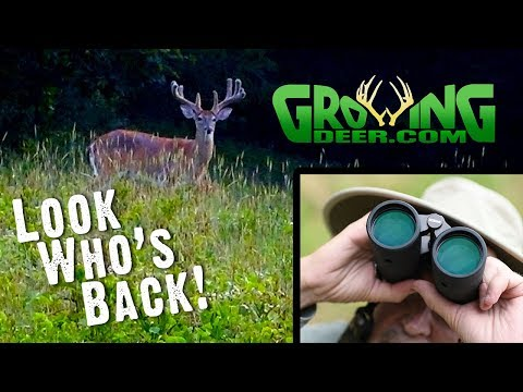 4 Steps To Create An Ideal Hunting Stand Location | Early Scouting For Deer Hunting (#502)