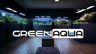 BEAUTIFUL PLANTED TANKS THE GREEN AQUA SHOWROOM - 2020 CINEMATIC EDITION