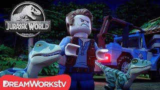 Owen the Velociraptor | LEGO JURASSIC WORLD: LEGEND OF ISLA NUBLAR