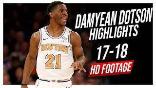 Knicks SG Damyean Dotson 2017-2018 Season Highlights ᴴᴰ