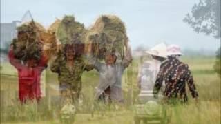 Hoài Ân Nỗi Nhớ Chín Chiều -  Lê Tuyền ( Official )