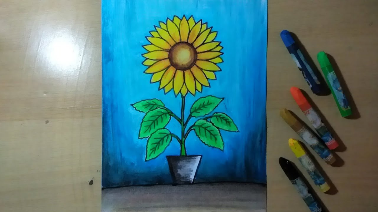 Cara Menggambar Bunga Matahari Di Pot - YouTube