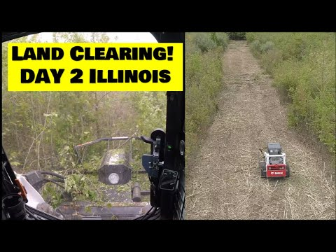 a-new-land-clearing-project-day-2.-illinois-land-management-bobcat-t650-ctl-clearing-land!