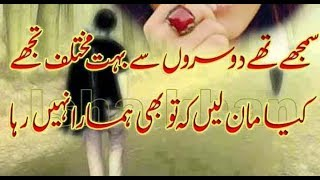 Best Aqwale Zareen In Urdubest Urdu Quotes In Urdu Hdlatest Urdu