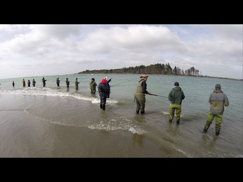 NZ Salmon Anglers Association Fishing Competition 2017