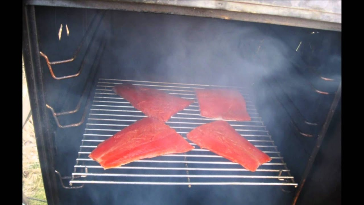 Cold smoking fish by homesteading downsized youtube for Cold smoking fish