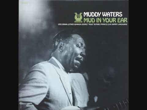 Muddy Waters - Mud In Your Ear (Full Album)