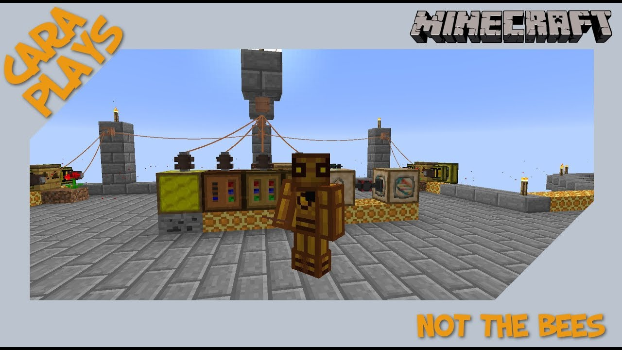 MineCraft Not the Bees 06