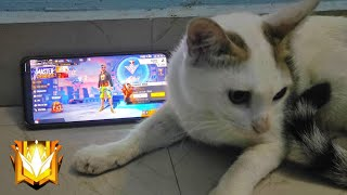CAT PLAYING FREE FIRE ⚡The Unbelievable MomentNothing can stop  him