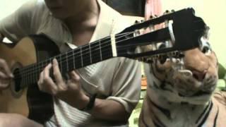 Ở Trọ   Arr  & Played  Thanh Nhã