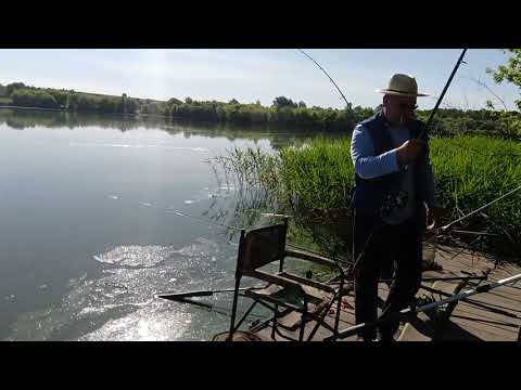 Рыбалка в Знаменка Курская обл. Горшеченский район 14 июня 2019 г.
