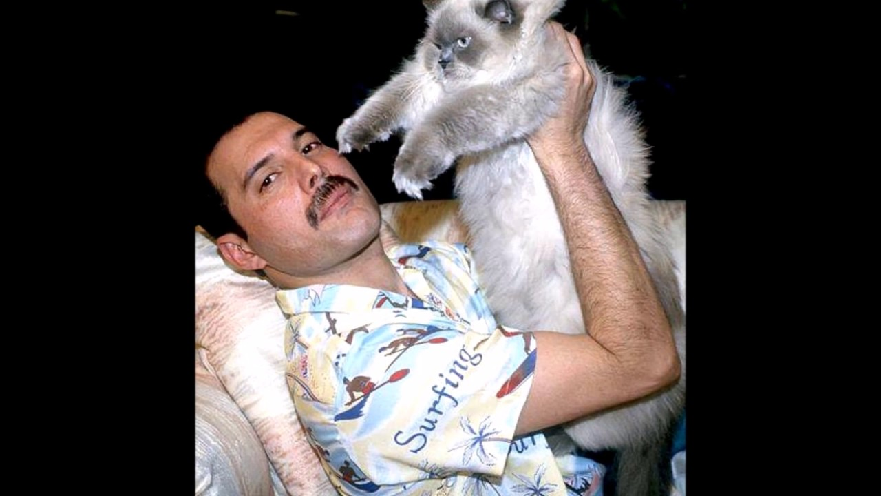 Queen Freddie Mercury Show Must Go On Youtube
