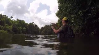 FW testing Aji fishing rig
