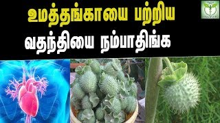 Amazing Health Benefits Of Datura - Tamil Health & Beauty Tips
