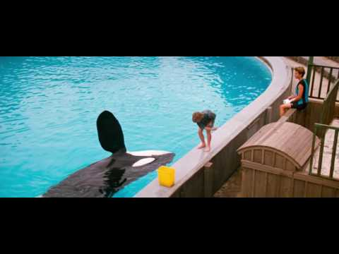 Free Willy the beginning of a friendship HD