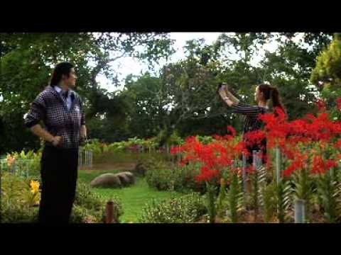 TV9 Promo - Cinta Pandang Ke-2, Episod Akhir, 6 Mac, 8.30 mlm