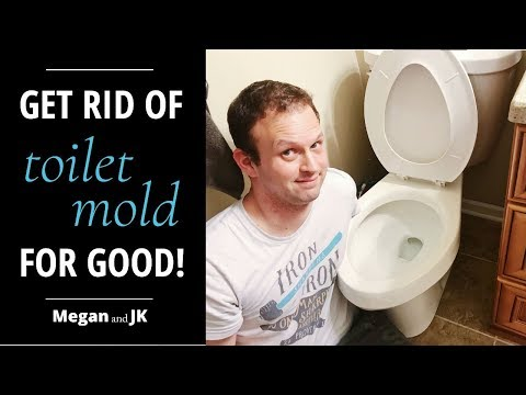 How to Clean Your Toilet Rim For Good