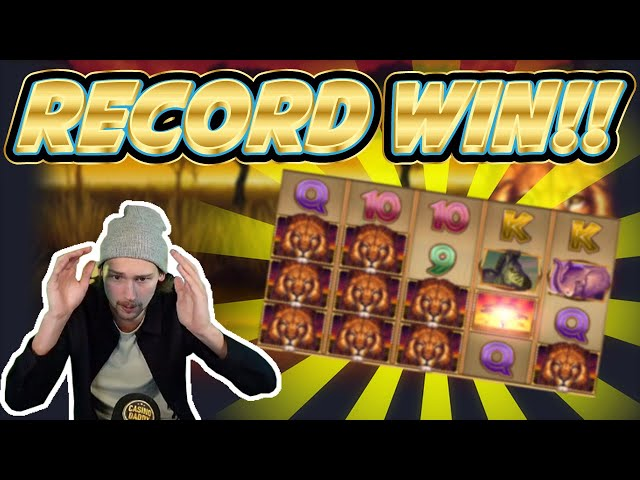 RECORD WIN! African Quest Big win - HUGE WIN from Casinodaddy live stream