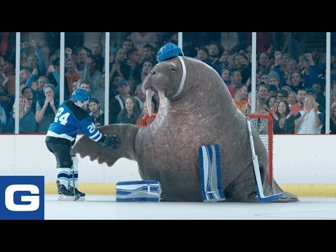 Walrus Goalie Geico Insurance Youtube