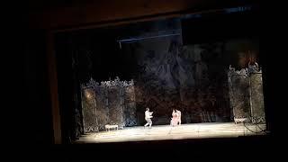Самвел Адамян | Ария Керубино | опера Свадьба Фигаро
