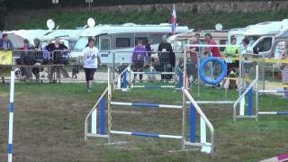 Avallon Cup 2015 - Concours d'agility international - Édition 2015 à Avallon (89)
