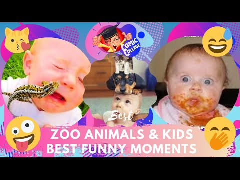 FUNNIEST ZOO ANIMALS & KIDS BEST FUNNY MOMENTS TRY NOT TO LAUGH COMPILATION Part 1