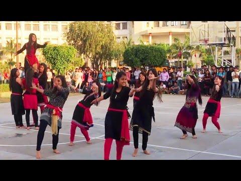 Pahari Nati at Baddi University| Himachali Folk Dance 2017