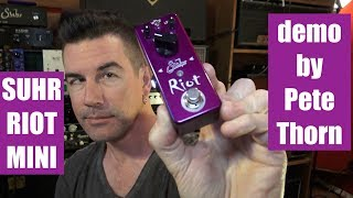 SUHR RIOT MINI DISTORTION, demo by Pete Thorn