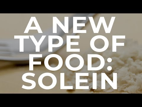 A New Type of Food: Solein