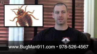 What do Bed Bugs look like? Greater Boston, MA Specialist