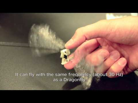 Micro Air Vehicle Type-Dragonfly