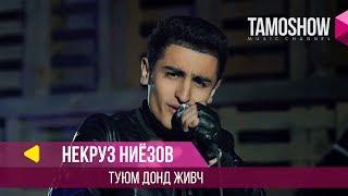Некруз Ниёзов - Туюм донд живч / Nekruz Niyozov - Tuyum Dond Zhiwj (2018)