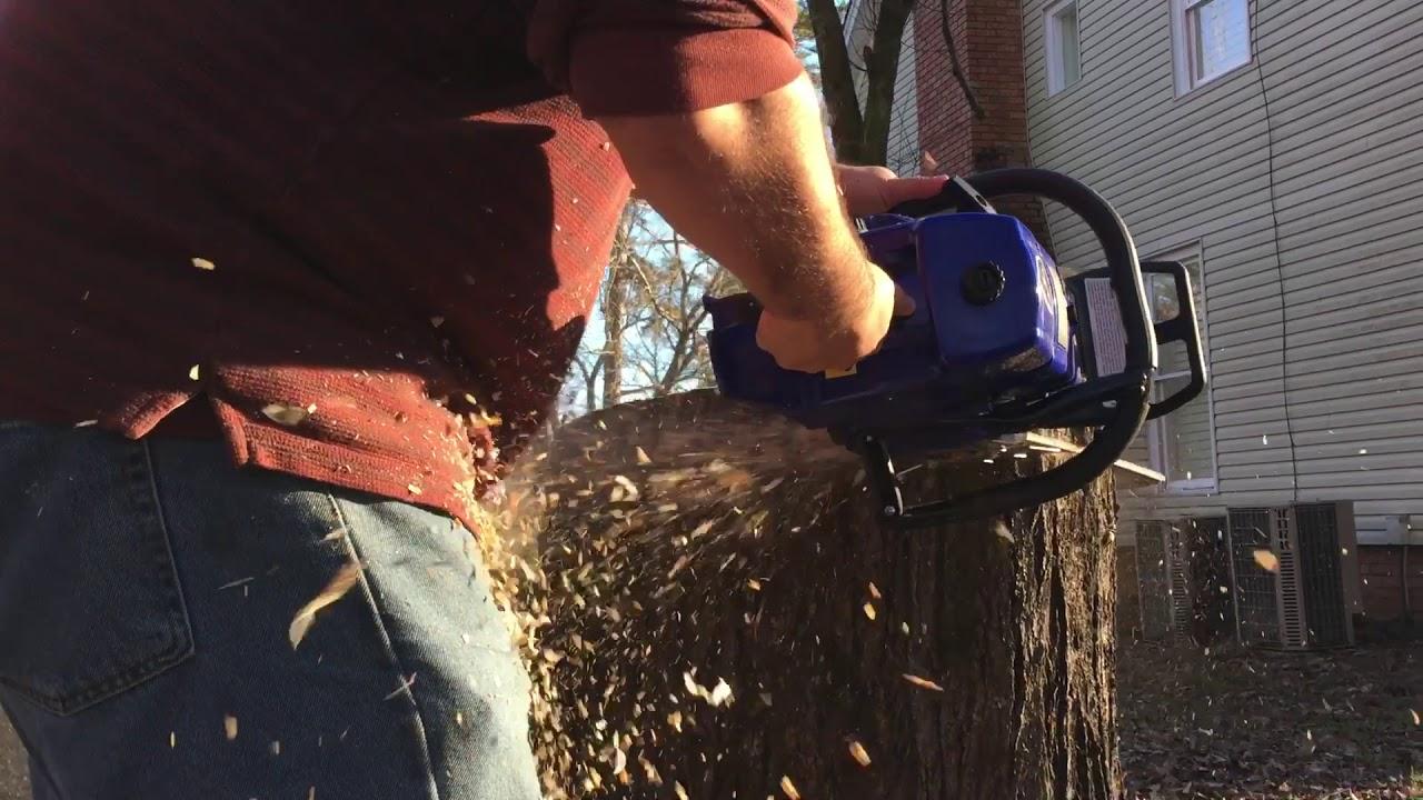 Holzfforma Farmertec G660 Cutting Maple