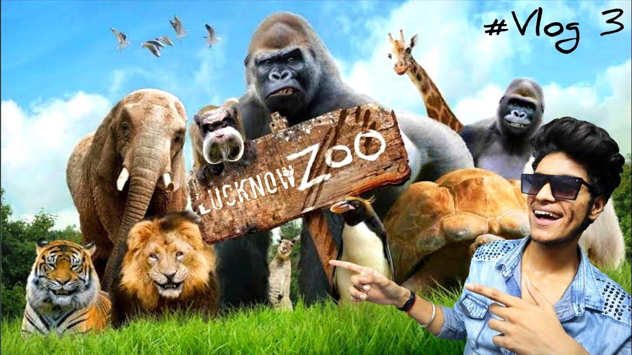LUCKNOW ZOO 2020 !! लखनऊ चीडियाघर !! Lucknow Vlog 3 !! Sachin Puri !!