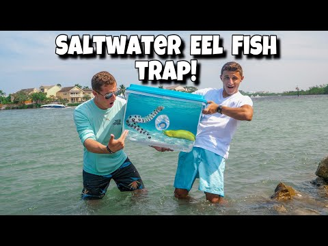 FISH TRAP Catches EXOTIC EEL For My AQUARIUM!!