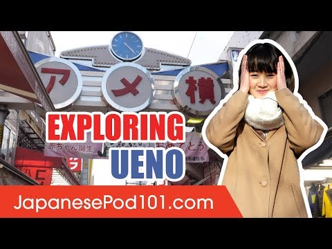 Exploring Ueno - Things to Do in Tokyo