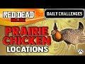 Red Dead Online - Prairie Chicken Location - Daily Challenge - RDR2 - Prairie Chickens Skinned