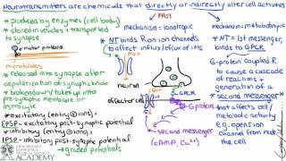 Neurotransmitters & Receptors
