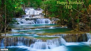 Tej  Nature & Naturaleza - Happy Birthday