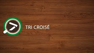 #06 Tri Croisé dans Excel avec XLSTAT