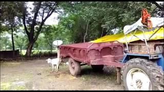 ट्रैक्टर चलाती ललितपुर जिले के इंदिरा में है बहुत दम!
