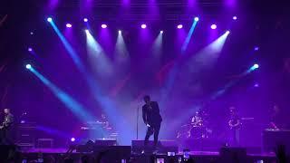 Dan Balan - Лепестками слез  (Live) HD Воронеж 2017