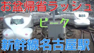 お盆帰省ラッシュのピークを迎えた2016年8月13日の東海道新幹線 名古屋...