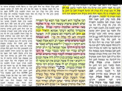 הדף היומי מסכת תמורה דף ל Daf yomi Temurah daf 30